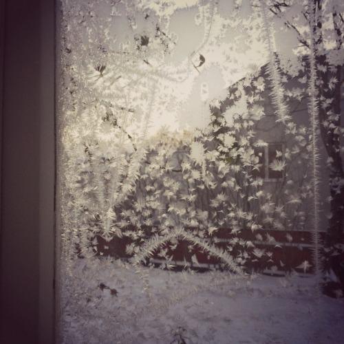 Keittiön ikkunan kauniit jääkukat aamun hämärässä.